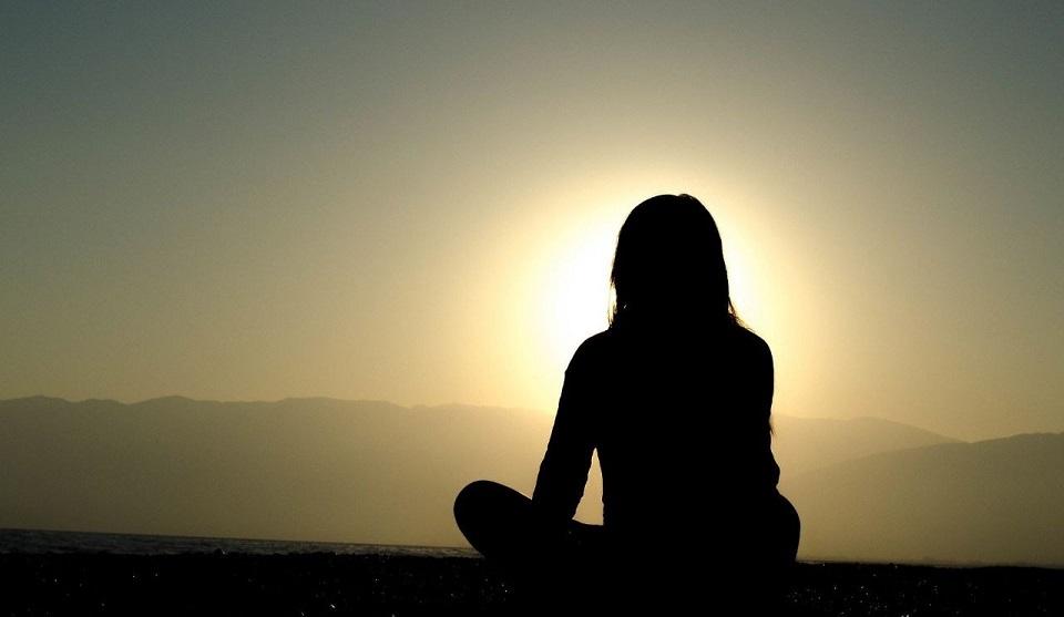 O Zen Enquanto Caminho Para a Sensibilização Ecológica