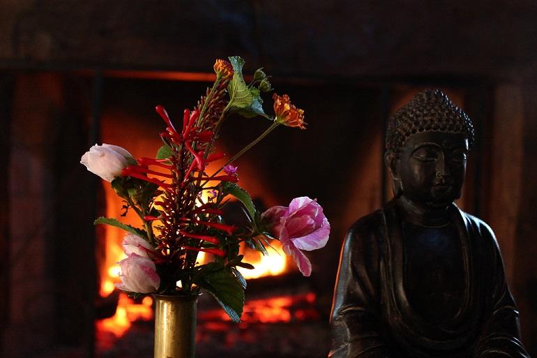 Sangha: Lugar de Harmonia e Transformação
